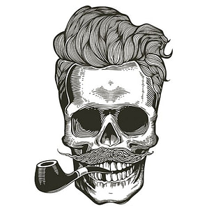PAPEL SUBLIMACION ARTIS DECOR 30X30 SKULL HIPSTER